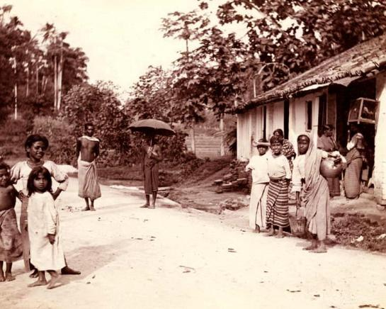 Another scene from 1910 - a shop on the Kandy Road. Harper would have visited Kandy.
