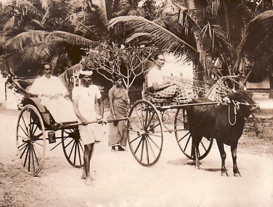 Edward Harper may well have travelled in Rickshaws in Colombo - this picture was taken in 1929.