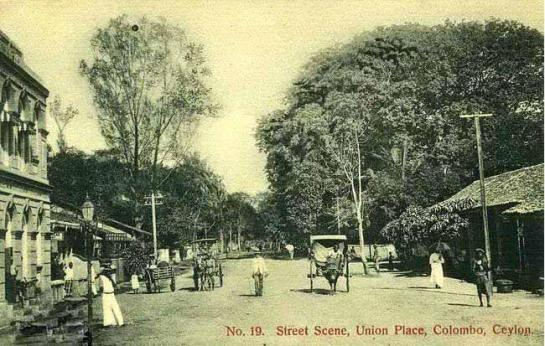 Edward Harper would have gone past Union Place in Colombo - this photograph was taken in 1910.