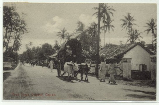 Colpetty, Kollupitiya, Colombo-3 probarbly in the early 1900s.